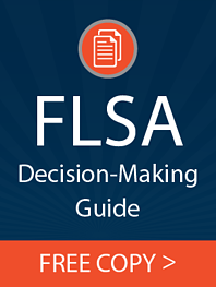 CTA blog_FLSA Decision making guide download